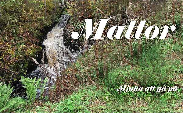 Mattor Skåne : Mattor